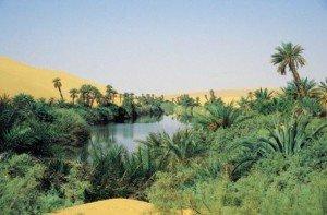 Oasis desierto